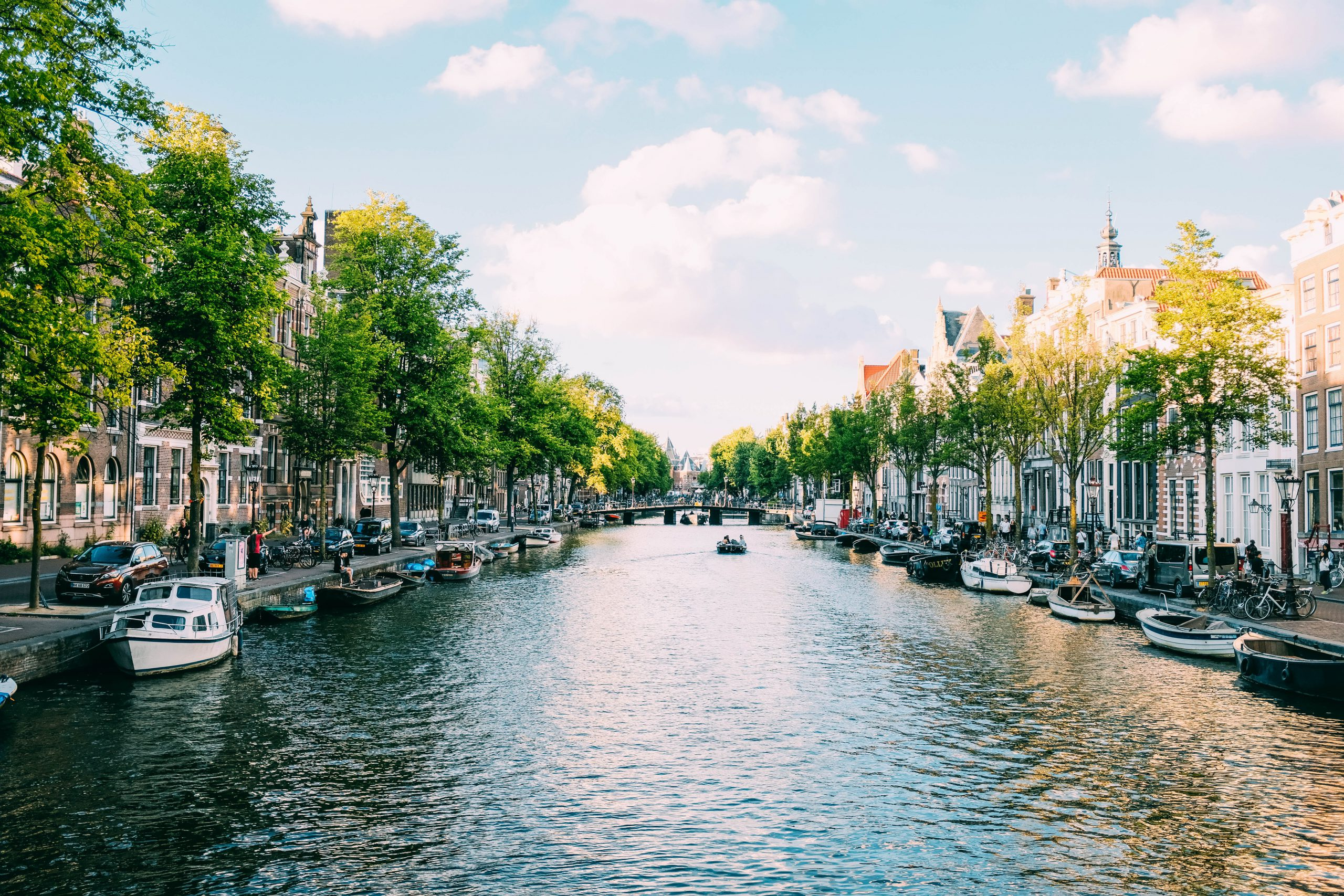 Americans in The Netherlands: an exclusive webinar
